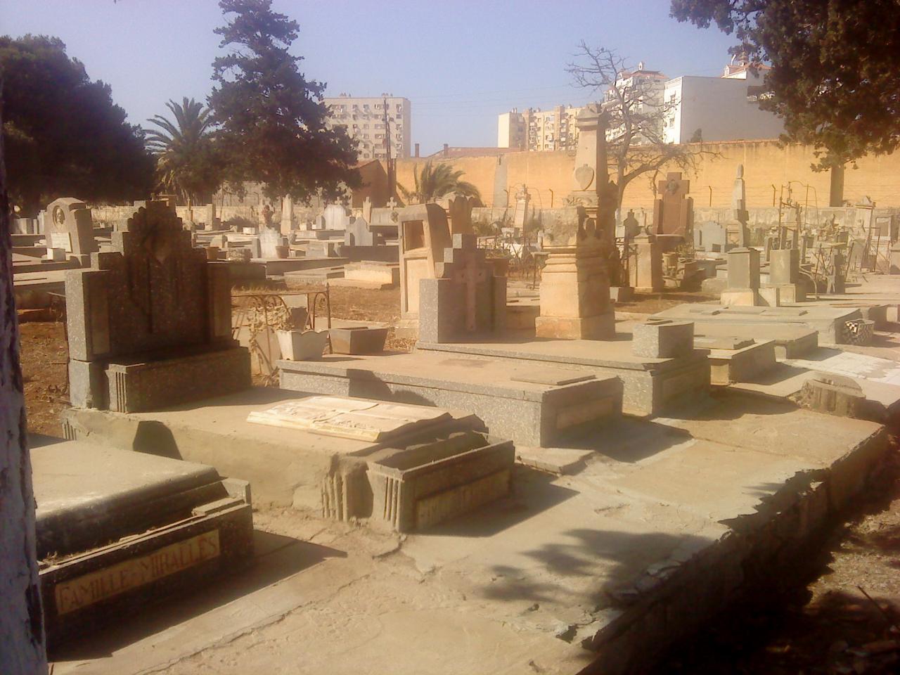 Oran Tamashouet carré 21